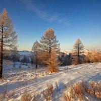 На горы зимние, взор Ваш, пусть неутомимым будет :: Сергей Жуков