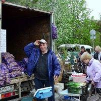 Кому картошки? :: Владимир Болдырев