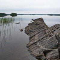 Вокшозеро :: Владимир Брагилевский