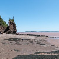 Идём по дну океана к одной из удивительных скал Hopewell Cape Rocks (залив Фунди, Канада) :: Юрий Поляков