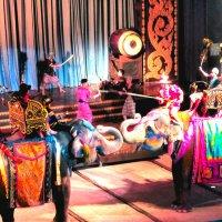 театр со слонами :: Таня