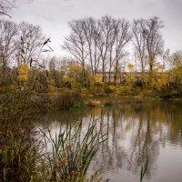 Осень :: Константин Тимченко