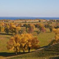 осенний пейзаж :: Седа Ковтун