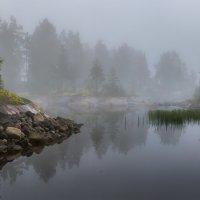 Туманно-пасмурное утро на Ладоге :: Фёдор. Лашков