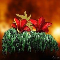 цветочный луг :: linnud