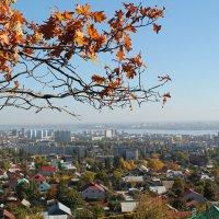 Осень над Саратовом :: Лариса Коломиец
