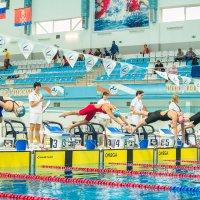 Чемпионат России по плаванию-2016 . г.Руза :: Андрей Куприянов