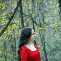 Золотая осень :: Екатерина