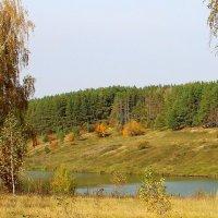 Осенний пейзаж. :: Борис Митрохин