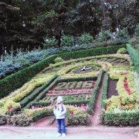 Кисловодск. Часы-календарь из цветов :: татьяна