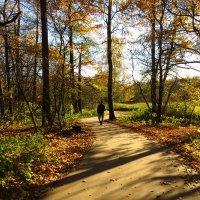 Сегодня солнечно, но прохладно :: Андрей Лукьянов