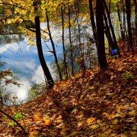 Осень на Смоленщине (11) :: Милешкин Владимир Алексеевич