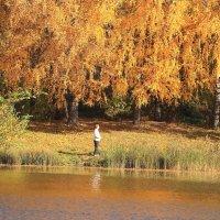 Наедине с осенью :: Татьяна Ломтева