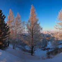 На горы зимние, взор Ваш, пусть неутомимым будет 11 :: Сергей Жуков