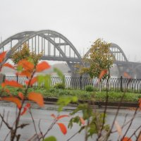 Рыбинск.Мост. :: Ольга Лапшина