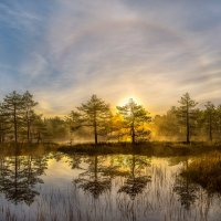 Солнечное гало на рассвете :: Фёдор. Лашков