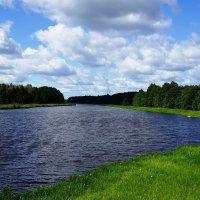 К озеру Лядскому :: Ольга Чистякова