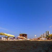 утро на пляже :: Пётр Беркун
