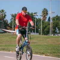 Мир велосипеда-6 :: Lmark
