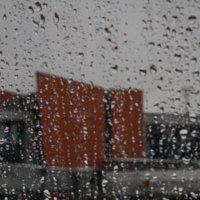 Дождливый день :: Людмила Синицына