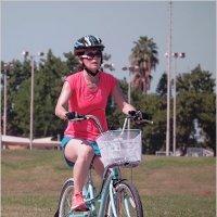 Мир велосипеда-8 :: Lmark