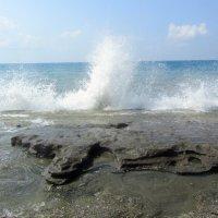 море волнуется три :: tgtyjdrf