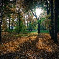 Осенний парк. :: Александр Селезнев