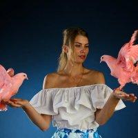 Райские птицы :: 100ЗВЕРЕЙ Агентство дрессированных животных