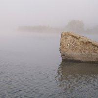 Утро туманное. :: Сергей Махонин