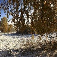 И слышатся песни, осени снежной 2 :: Сергей Жуков