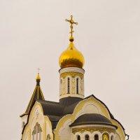 Храм преподобного Сергия Радонежского :: Дмитрий Н
