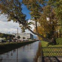 В Питере осень.. :: Владимир Питерский