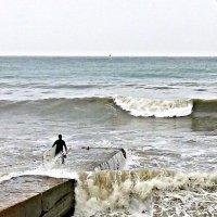серфинист перед стартом в Сочи :: Антонина Владимировна