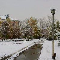 Направление на зиму. :: Владимир Михайлович Дадочкин