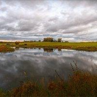 Осень пасмурная... :: Александр Никитинский