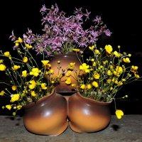 Полевые цветы. :: Hаталья Беклова