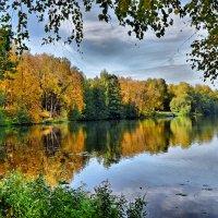 Осенний пруд :: Владимир Каравашкин