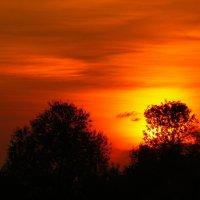 последний теплый вечер этой осени 4 :: Александр Прокудин
