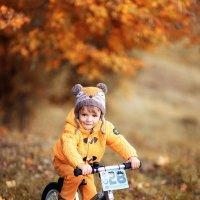 Осень :: Юлия Скороходова