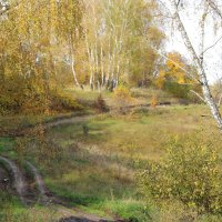 Осенний пейзаж с грунтовой дорогой. :: Борис Митрохин