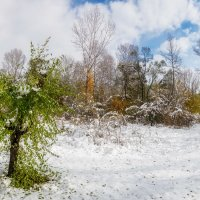 Октябрь. Первый снег. :: Евгений Герасименко