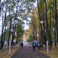 И снова осень в парке городском. :: Ольга Кривых