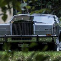 big car :: Dmitry Ozersky