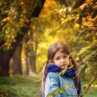 Осень :: Елена Деева