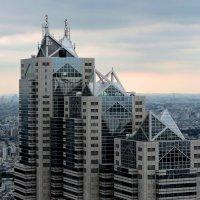 Вид на Токио :: Tatiana Belyatskaya