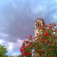 Цветы возле церкви. :: Оля Богданович