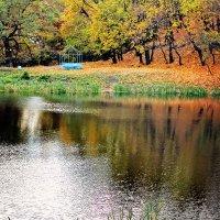 Осенний пруд :: Андрей Ситников
