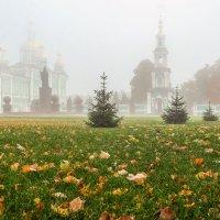 Осенний туман........... :: Александр Селезнев
