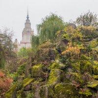 Вид на МГУ из Ботанического сада :: Людмила Быстрова