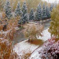 Зима уж на пороге . :: Мила Бовкун